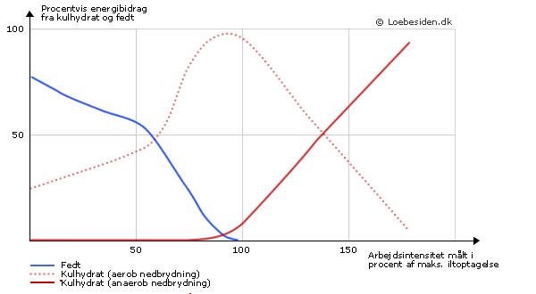 Grafen viser hvordan de tre forskellige forbrændingsformer fordeler sig som en funktion af intensiteten. Billedet er lånt fra løbesiden.dk